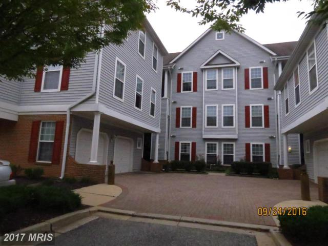 5001 Willow Branch Way #203, Owings Mills, MD 21117 (#BC9774712) :: Pearson Smith Realty