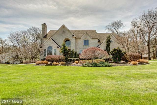 3 Aston Court, Owings Mills, MD 21117 (#BC9887895) :: LoCoMusings