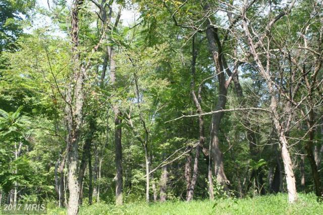 LOT 21 Pine Ridge Road, Clearville, PA 15535 (#BD9766334) :: LoCoMusings