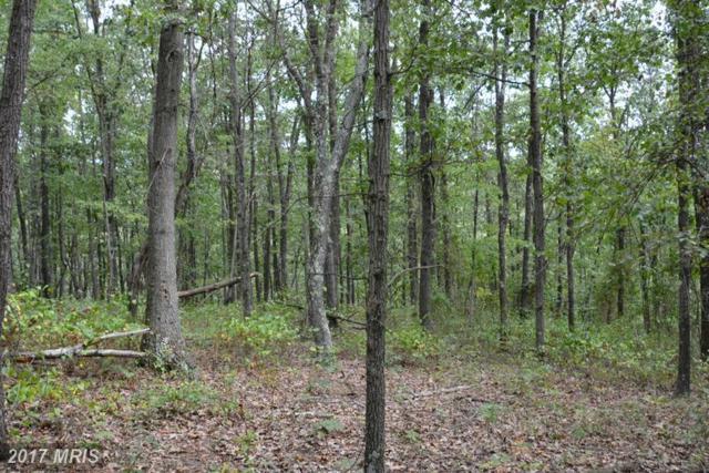 LOT 11 Pine Ridge Road, Clearville, PA 15535 (#BD9766336) :: LoCoMusings