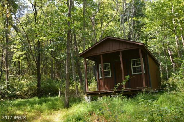 LOT 9 Pine Ridge Road, Clearville, PA 15535 (#BD9766351) :: LoCoMusings