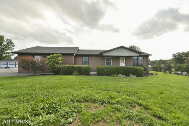 20 Denim Lane, Martinsburg, WV 25405 (#BE10016944) :: Pearson Smith Realty