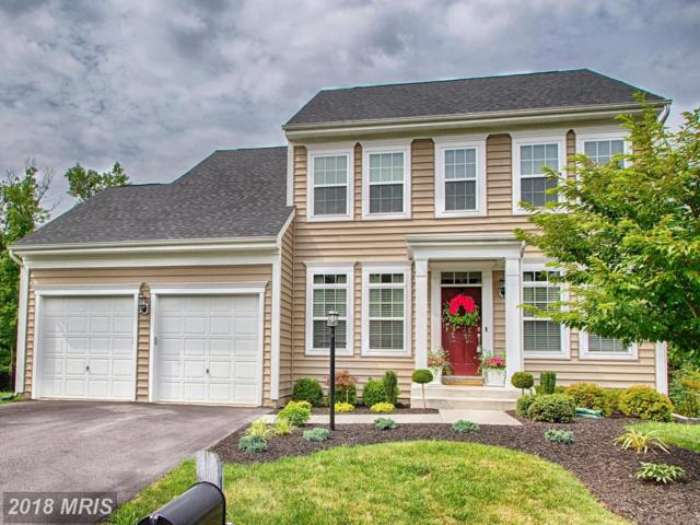 144 Tributary Trail, Falling Waters, WV 25419 (#BE10293103) :: Labrador Real Estate Team