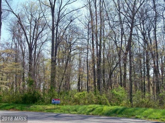 32 Nimitz Lane, Hedgesville, WV 25427 (#BE9627482) :: AJ Team Realty