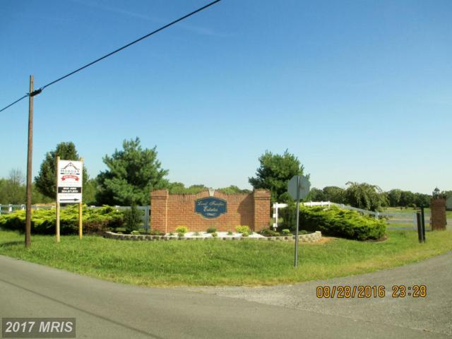 LOT 2 Eiderdown Drive, Martinsburg, WV 25404 (#BE9755452) :: Pearson Smith Realty