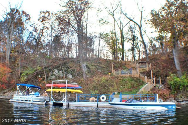 Swift River Way, Shepherdstown, WV 25443 (#BE9769713) :: LoCoMusings