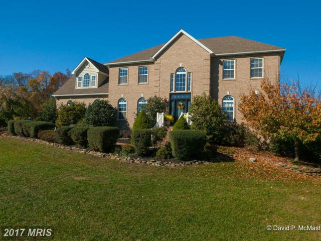 100 Fuji Court, Inwood, WV 25428 (#BE9801156) :: Pearson Smith Realty