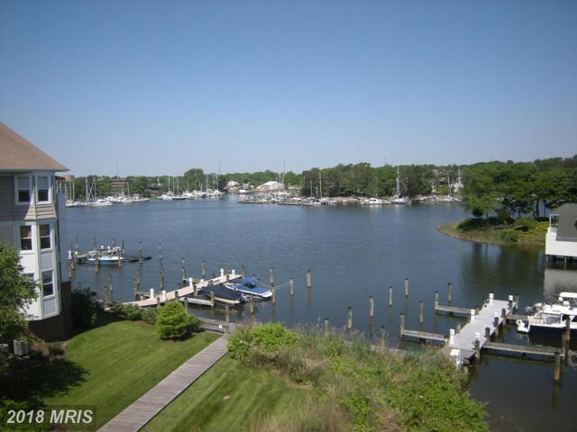533 Oyster Bay Place #402, Dowell, MD 20629 (#CA10103839) :: Bob Lucido Team of Keller Williams Integrity