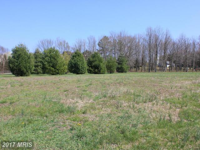 6410 Edith Lane, Huntingtown, MD 20639 (#CA9614562) :: Pearson Smith Realty