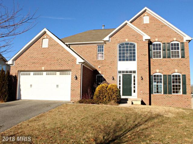 207 Magnolia Drive, Elkton, MD 21921 (#CC10125881) :: The Gus Anthony Team