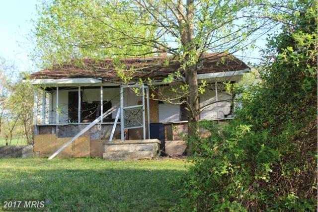 124 Mcglothlin Road, Conowingo, MD 21918 (#CC9683408) :: Pearson Smith Realty