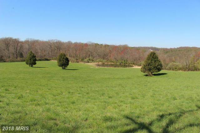 LOT #17 Marian Drive, Port Deposit, MD 21904 (#CC9844628) :: Pearson Smith Realty