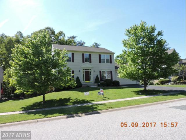 167 Whitaker Avenue, North East, MD 21901 (#CC9853319) :: LoCoMusings