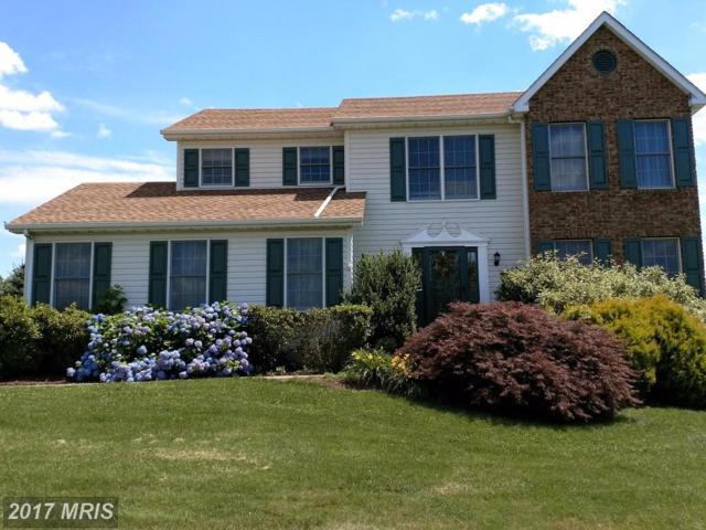 135 Long Drive, Elkton, MD 21921 (#CC9888179) :: Pearson Smith Realty