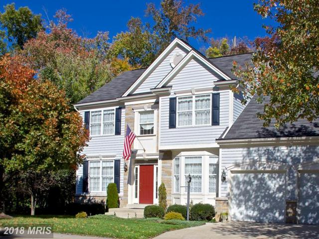 2586 Merganser Court, Waldorf, MD 20601 (#CH10094144) :: Pearson Smith Realty