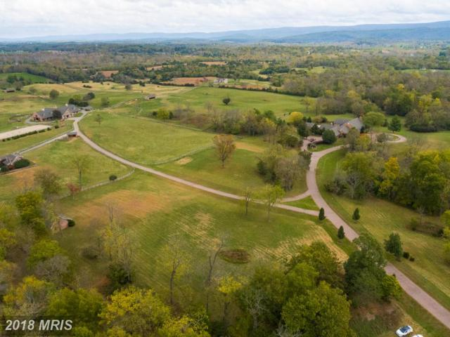 6586 John Mosby Highway, Boyce, VA 22620 (#CL10112552) :: The Bob & Ronna Group