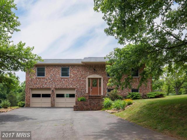282 Kinsky Lane, Berryville, VA 22611 (#CL9908005) :: Pearson Smith Realty