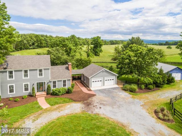 2247 Parshall Road, Berryville, VA 22611 (#CL9946903) :: Pearson Smith Realty
