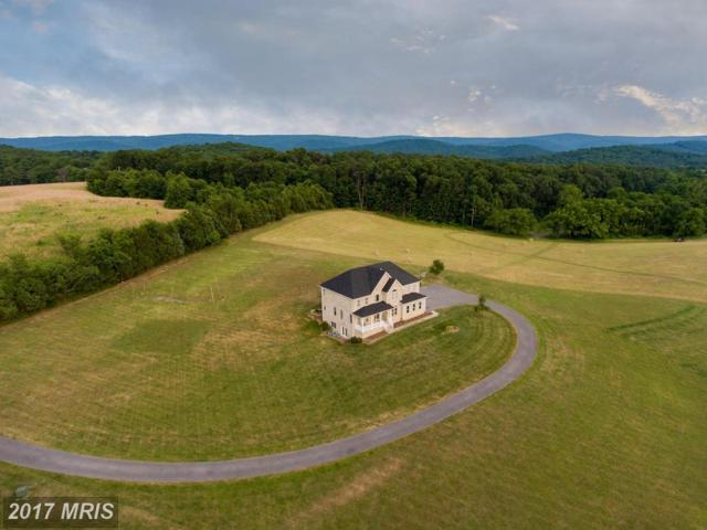 165 Pastoral Lane, Berryville, VA 22611 (#CL9954423) :: Pearson Smith Realty