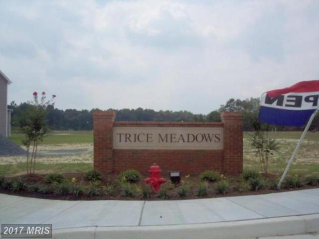 1101 Trice Meadows Circle, Denton, MD 21629 (#CM7413089) :: The Gus Anthony Team