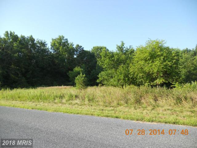 Houston Branch Road, Federalsburg, MD 21632 (#CM8416118) :: RE/MAX Coast and Country