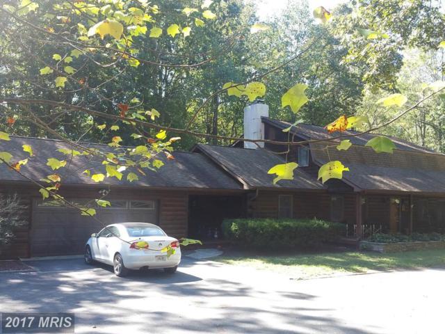 25449 Shad Run Way, Greensboro, MD 21639 (#CM9774468) :: Pearson Smith Realty