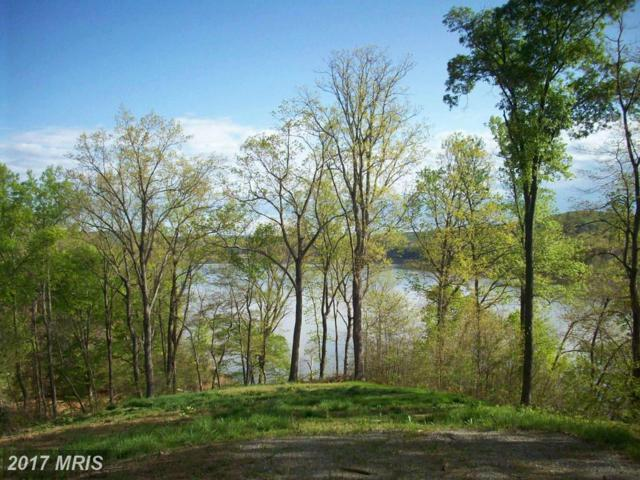 96 Jacobs Hollow, Lynch Station, VA 24571 (#CP8767836) :: Pearson Smith Realty