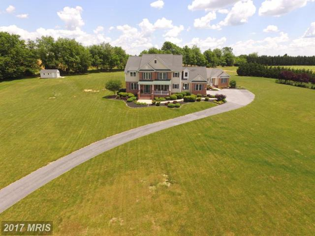477 Calvins Drive, Sykesville, MD 21784 (#CR9965534) :: Pearson Smith Realty