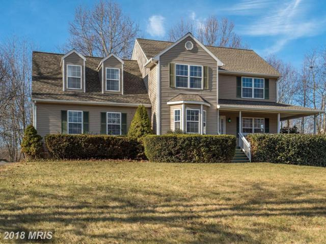 14056 Westwind Lane, Culpeper, VA 22701 (#CU10138518) :: Keller Williams Pat Hiban Real Estate Group