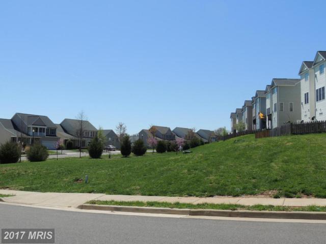 Dove Lane, Culpeper, VA 22701 (#CU8320984) :: Pearson Smith Realty