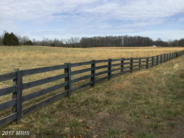 0 Ryland Chapel Road, Jeffersonton, VA 22724 (#CU8495834) :: Pearson Smith Realty