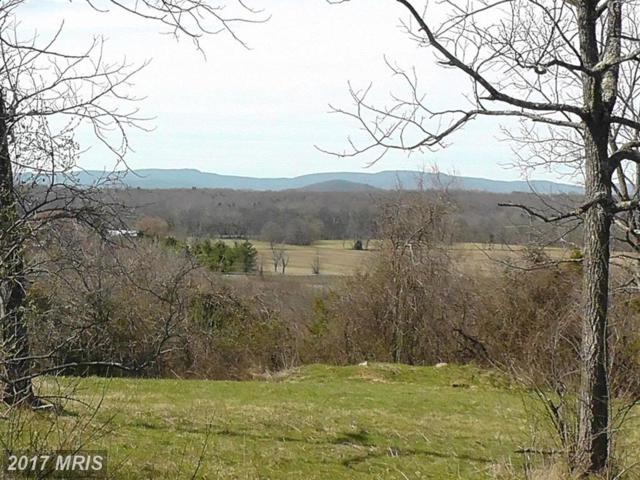 A Old Barn Road, Rixeyville, VA 22737 (#CU9599454) :: Pearson Smith Realty