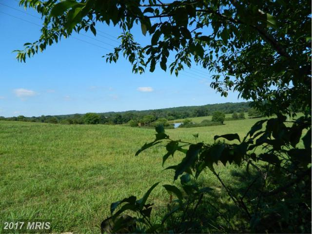 Lot 2 Oakland Road, Reva, VA 22735 (#CU9732754) :: LoCoMusings
