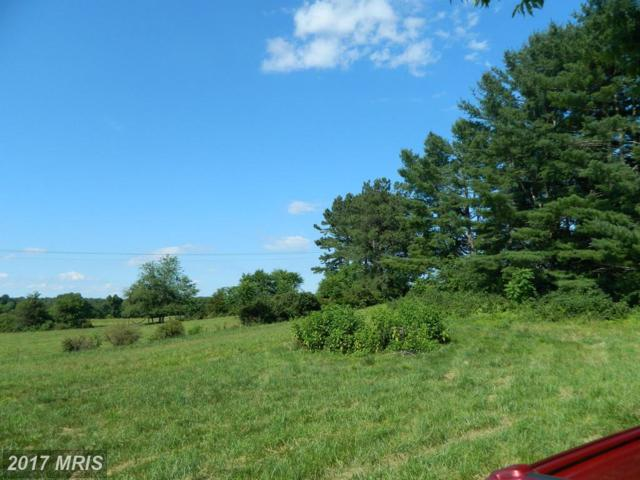 Lot 3 Oakland Road, Culpeper, VA 22701 (#CU9732931) :: LoCoMusings
