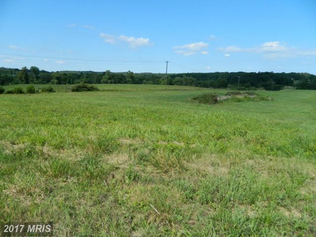 Lot 5 Oakland Road, Reva, VA 22735 (#CU9733754) :: LoCoMusings