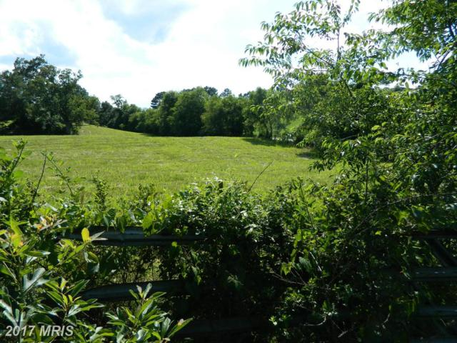 Lot 11 Oakland Road, Reva, VA 22735 (#CU9734644) :: LoCoMusings