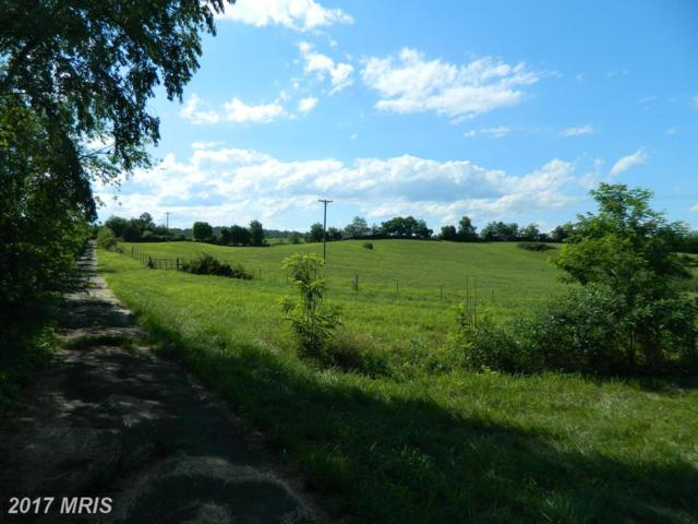 Lot 10 Oakland Road, Reva, VA 22735 (#CU9734879) :: LoCoMusings