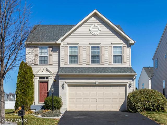 12323 Osprey Lane, Culpeper, VA 22701 (#CU9880796) :: Pearson Smith Realty