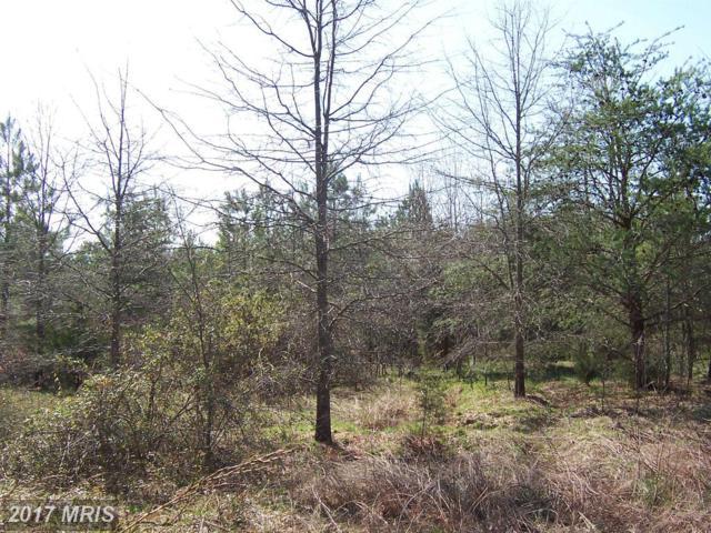 Mary Lee Drive, Doswell, VA 23047 (#CV8049002) :: Pearson Smith Realty