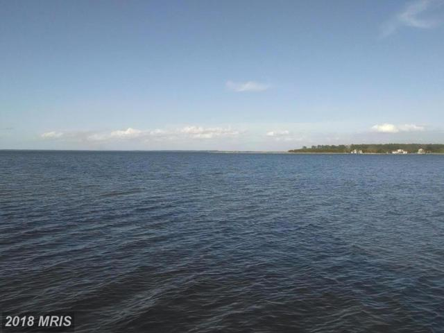 6205 Twin Point Cove Road, Cambridge, MD 21613 (MLS #DO9010423) :: RE/MAX Coast and Country