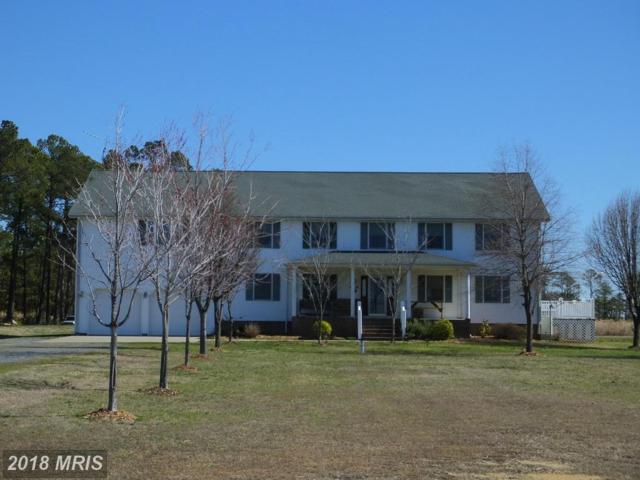 2613 Hoopers Island Road, Fishing Creek, MD 21634 (#DO9882955) :: Eric Stewart Group