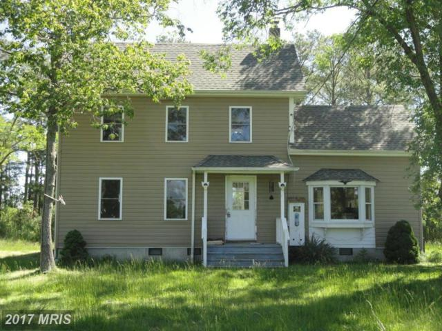 1807 Crocheron Road, Toddville, MD 21672 (#DO9958759) :: Pearson Smith Realty