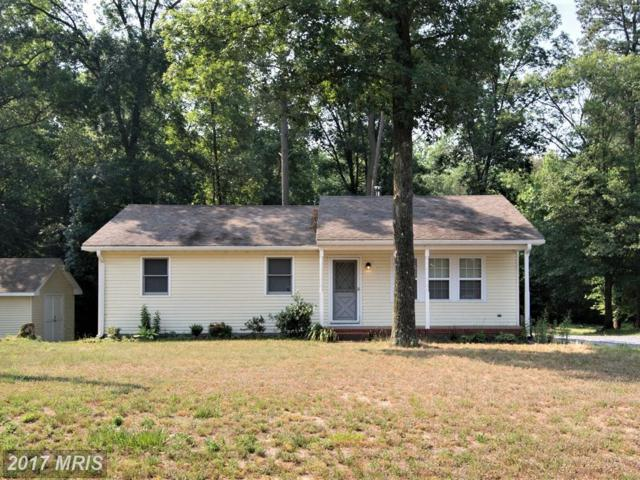 5231 River Road, Hurlock, MD 21643 (#DO9972846) :: Pearson Smith Realty