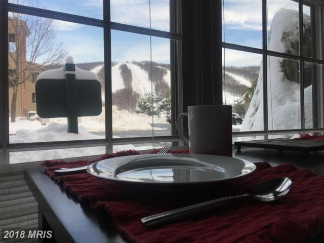 14200 Northernlight Drive #35, Mercersburg, PA 17236 (#FL10060877) :: Dart Homes
