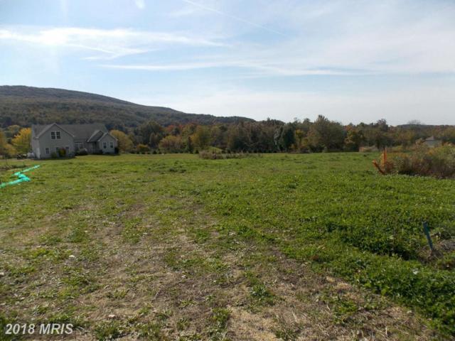 12468 Old Pen Mar Road, Waynesboro, PA 17268 (#FL9502459) :: Pearson Smith Realty