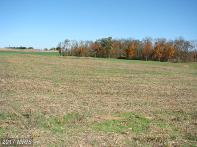 Scarlet Oak Drive, Mercersburg, PA 17236 (#FL9546009) :: Pearson Smith Realty