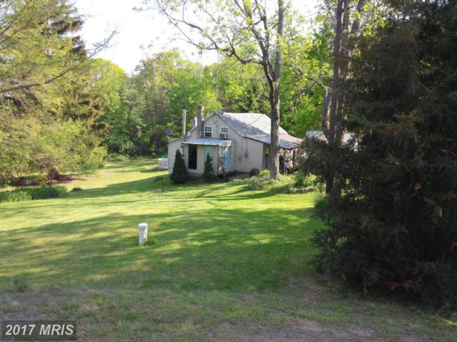 15059 Mountain Green Road, Willow Hill, PA 17271 (#FL9661977) :: Pearson Smith Realty