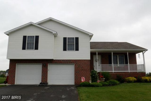 849 Lindia Drive, Chambersburg, PA 17202 (#FL9676568) :: Pearson Smith Realty