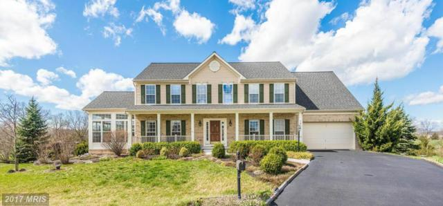 105 Autumnfest Court, Greencastle, PA 17225 (#FL9907174) :: Pearson Smith Realty