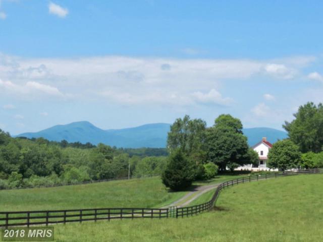 12036 Crest Hill Road, Hume, VA 22639 (#FQ10196199) :: Green Tree Realty